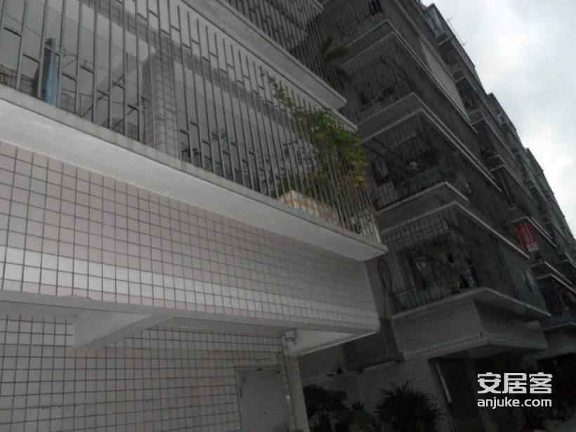 闽冶花园_3