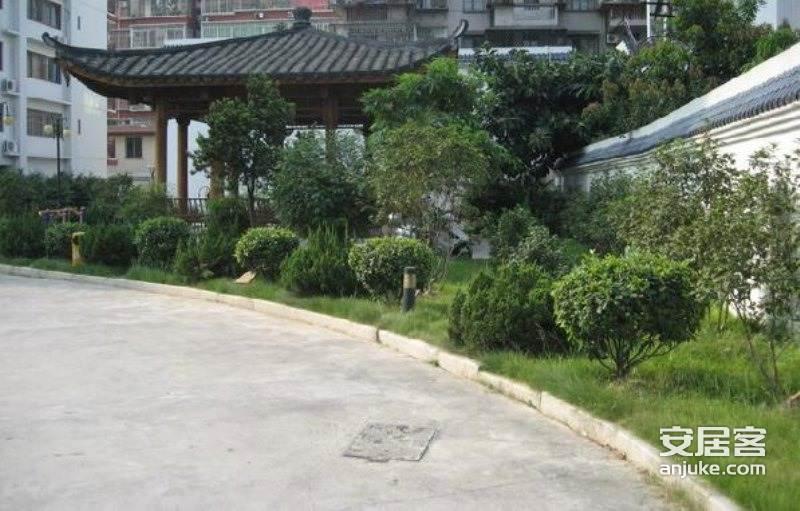 国色天香_0