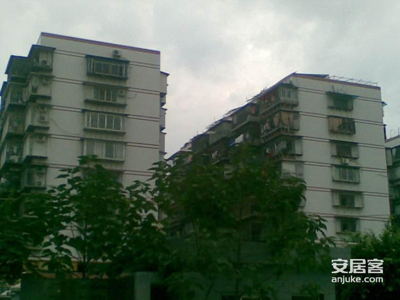 西洪新村_1